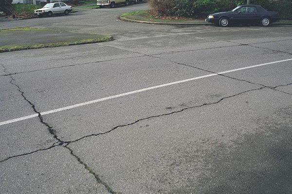 What Causes Concrete and Asphalt Driveway Cracks?